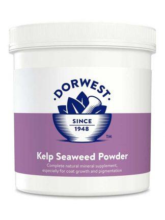 Dorwest kelp v prahu naravno prehransko dopolnilo za pse
