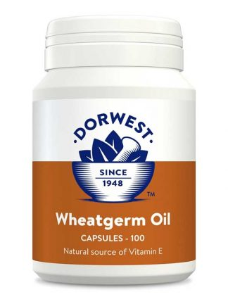 Dorwest olje pšeničnih kalčkov naravno prehransko dopolnilo za pasjo dlako in uravnavanje hormonov