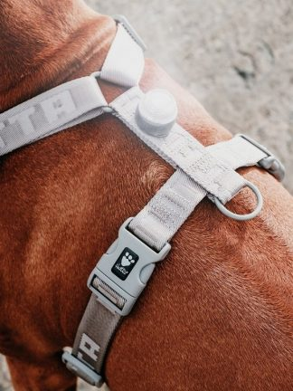 pasja oprsnica podložena mehka enostavna lahka kvalitetna najboljša z nosilcem za lučko