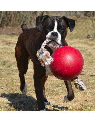 žoga z vrvjo za velike pse