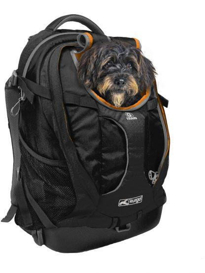 nahrbtnik za psa kurgo