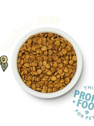 mačja hrana brez žitaric lilys kitchen riba izgled briketov