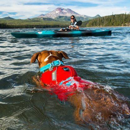 rešilni jopič za pse kajak kanu igra prinašanje voda plavanje