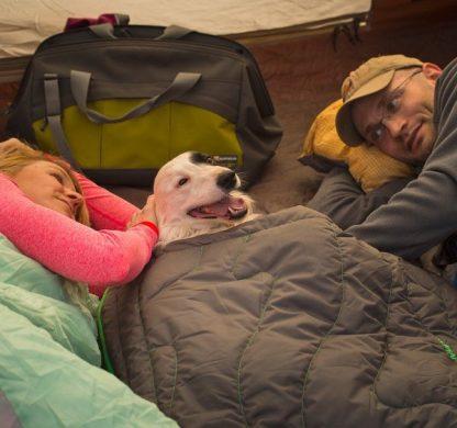 pasja spalka izredno topla priročna lahka zložljiva potovanje pohod prikaz uporabe border collie