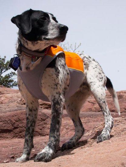 hladilni jopič jet stream ruffwear oranžen za poletne dni