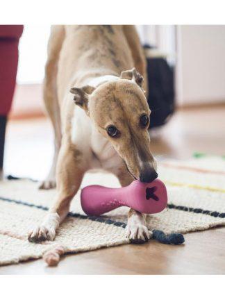 eko kost igrača za psa