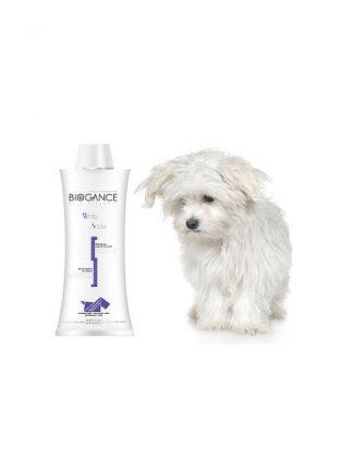 naravni šampon za bele pse