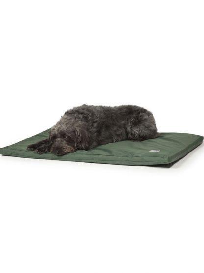 vodoodporna postelja za psa