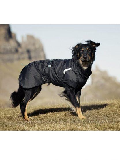 topel zimski plašček za psa hurtta