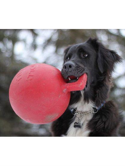 jolly pets žoga z ročajem