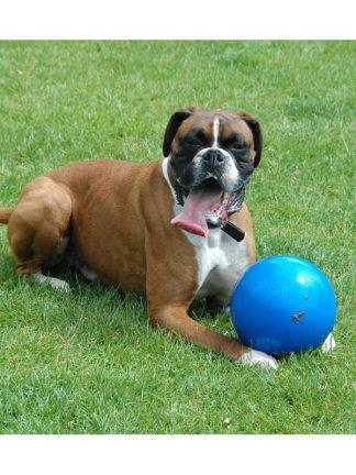 boomer ball trda žoga za velike pse in konje