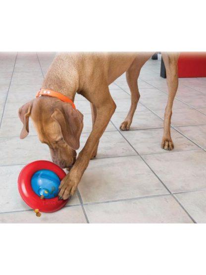 kong gyro igrača za zaposlitev psa