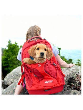 torba za psa nahrbtnik za nošenje psa