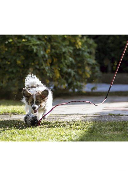igrača plen na palici za psa