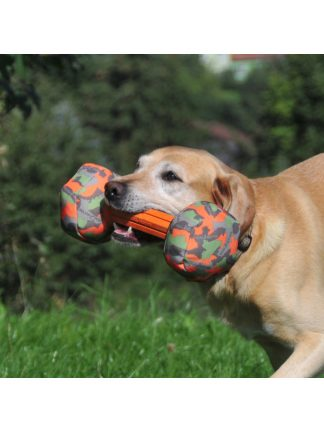 aport pasje prinosilo majordog
