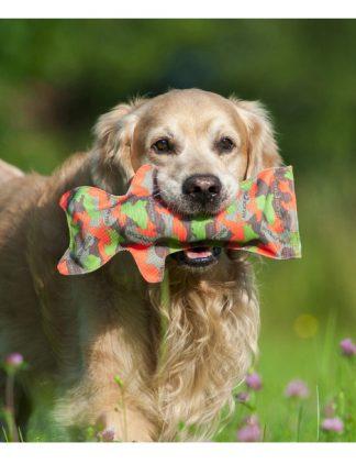 igrača za psa s plastenko majordog