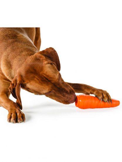 kong igrača za hrano za psa