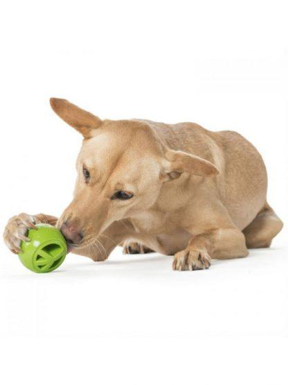 žoga za psa planet dog nook peace