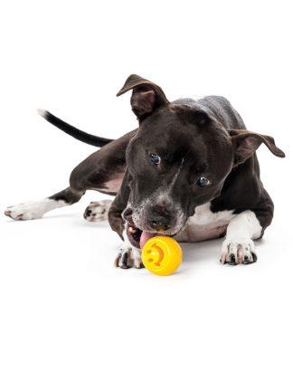 žoga za psa v obliki smeška planet dog