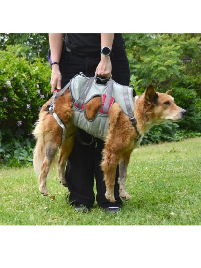 ruffwear doubleback oprsnica nosila za psa