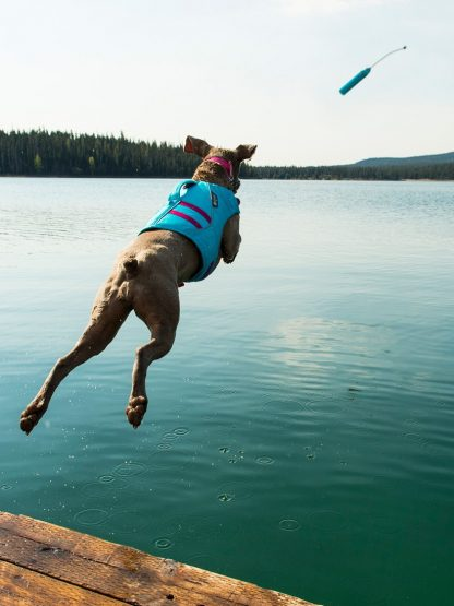 ruffwear prinosilo za psa plavajoč aport