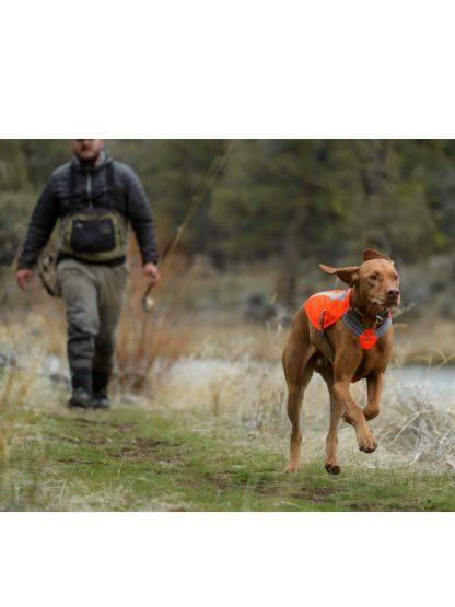 ruffwear track jacket odsevni jopič za pse