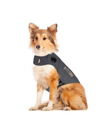 prestrašen pes plašček za pomirjanje thundershirt