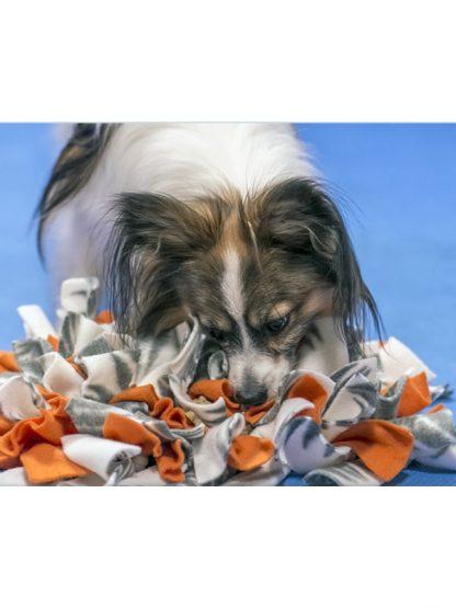 šnofla interaktivna pasja igrača