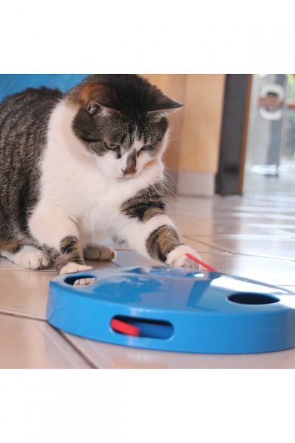 igrača za mačke