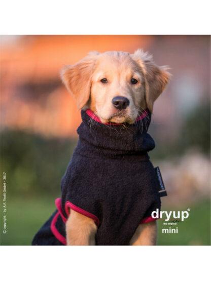 dry up coat za pse