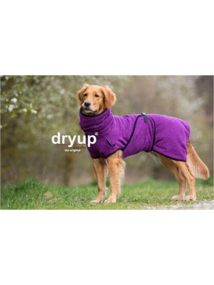 DryupClassic_viola