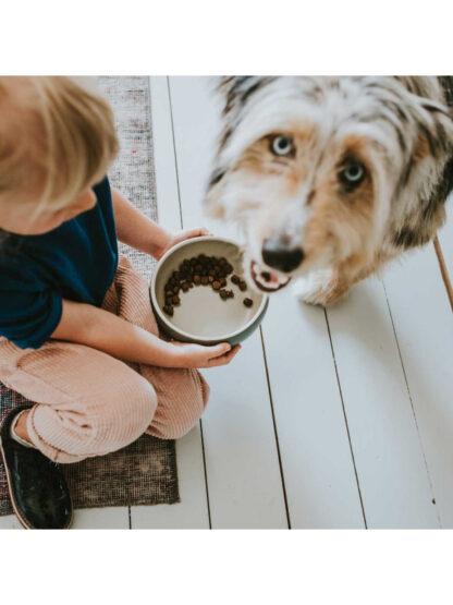 hunter keramična posoda za pse