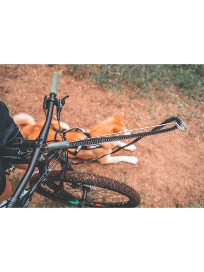 bikejoring antena